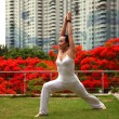 Yoga High Lunge — Stock Photo