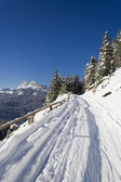 Trail on the slopes of San Vito di Cadore — Stock Photo
