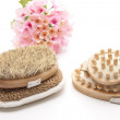 Back brush on sponge — Stock Photo