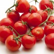 Shrub tomatoes — Stock Photo