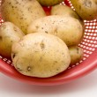 Stock Photo: Potatoes in culinary sieve