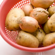 Potatoes and onions — Stock Photo