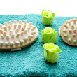 Massage brush with smell blossom — Foto de Stock