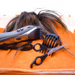 Electric clippers — Stock Photo