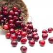Cherries — Stock Photo #11459211
