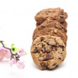 Chocolate Cookies — Stock Photo #11888880