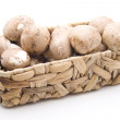 Stock Photo: Champignons in basket