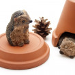 Hedgehog with tone lid and tone pot — Stock Photo