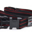 Travel belt — Stock Photo