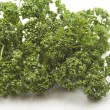 Fresh parsley — Stock Photo #12095654