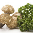 Stock Photo: Parsley with champignons