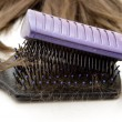Hairbrushes — Stock Photo