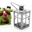 Lantern with frog pair — Stock Photo