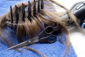 Secador de cabelo, cabelo — Foto Stock