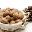 Walnuts  with conifer cone — Stock Photo