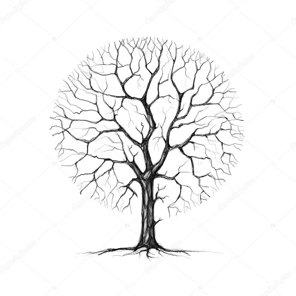 Дерево сакуры нарисовать