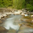 Natural mountain river — Stock Photo #11814101