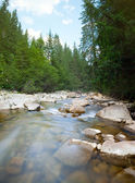Carpathian mountain river — Stock Photo