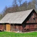 Wood house — Stock Photo #10916734