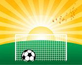 Football on grass — Stock Vector