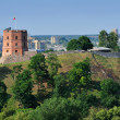 Stock Photo: Tower of Gediminas, Vilnius