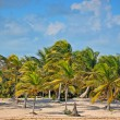 Beautiful tropical beach Costa Mya - landscape - Stock Photo