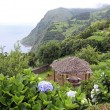 Viewpoint at Sao Miguel (Azores) 02 — Stock Photo