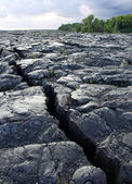 Crack in the lava field at Big Island (Hawaii) — Stock Photo