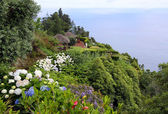 Viewpoint at Sao Miguel (Azores) — Zdjęcie stockowe