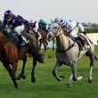 Stock Photo: Jockeys with horses during race