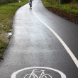 Cycle track 02 - Stock Photo