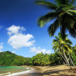 Stock Photo: Beach of EnglishmBay (Tobago) 2