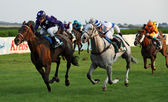 Jockeys with horses during a race — Stock Photo