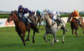 Jockeys with horses during a race — Stock Photo
