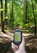 Outdoor navigation in the forest — Stock Photo
