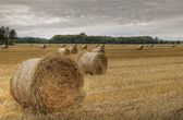 Bales of straw (HDR) 02 — Stock Photo