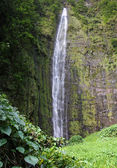 Chutes de waimoku (maui, hawaii) — Photo