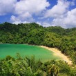 Overview of the Englishman Bay (Tobago) — Stock Photo #10830304