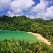 Overview of the Englishman Bay (Tobago) — Stock Photo