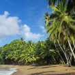 Beach of the Englishman Bay (Tobago) 3 — Stock Photo