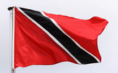 Flag of Trinidad and Tobago in the wind — Foto Stock