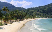 Overview of the Maracas Bay (Trinidad) — Stock Photo