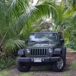 Stock Photo: Offroad in near of Han(Maui, Hawaii)
