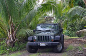 Offroad in the near of Hana (Maui, Hawaii) — Photo