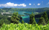 Viewpoint at Sao Miguel (Azores islands) — 图库照片