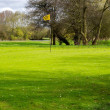 Stock Photo: Golf course