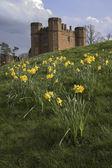 Kenilworth castle — Stock Photo