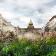 Stock Photo: Wenceslas square in the summer, Prague