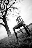 Monern schwarzer stuhl unter baum — Stockfoto