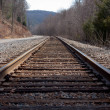 Stock Photo: Railroad Tracks By Road